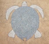 foto of terrazzo  - Terrazzo floor outside is brown color inside is lined with snapping turtle - JPG