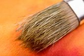 pic of bristle brush  - Paint brush arranged on a colorful canvas - JPG