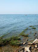 image of azov  - Taganrog bay in Azov sea near the Taganrog city Russia - JPG
