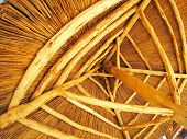 pic of bottom  - Yellow roof is made of cane  - JPG
