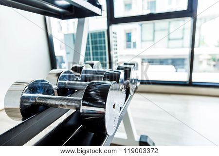 Iron Stainless Steel Dumbbells In Fitness Gym
