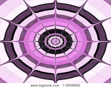 Pink black white concentric spiderweb pattern