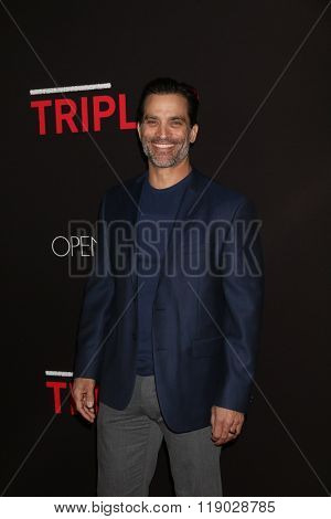 LOS ANGELES - FEB 16:  Johnathon Schaech at the Triple 9 Premiere at the Regal 14 Theaters on February 16, 2016 in Los Angeles, CA