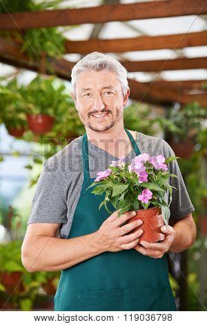 Smiling gardener with impatiens flower in a nursery shop