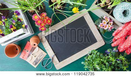 Planting Spring Flowers