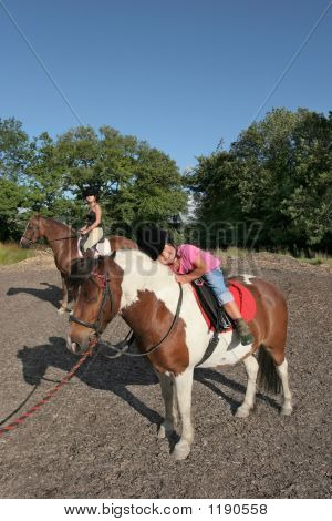 Horse Riding Pleasure