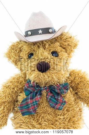 Close up cowboy  bear on white background