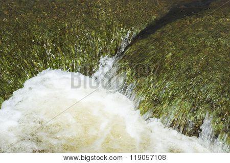 Brook Green Rocks Flowing Water
