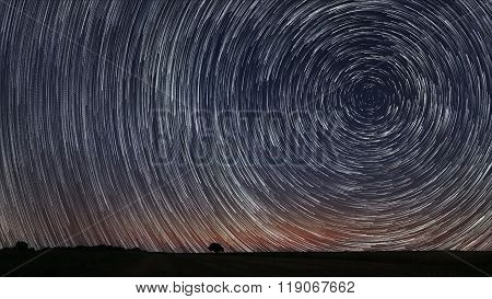 Beautiful Star Trails over filed with lonely tree. Beautiful night sky.