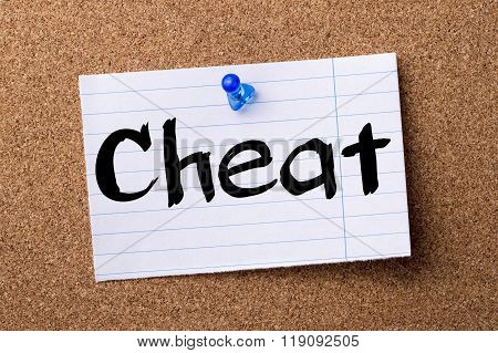 Cheat - Teared Note Paper Pinned On Bulletin Board
