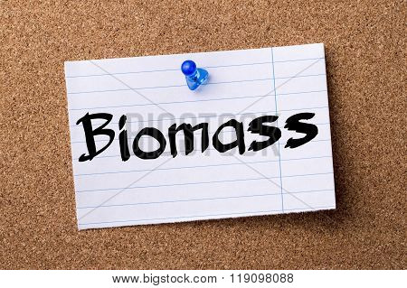 Biomass - Teared Note Paper Pinned On Bulletin Board