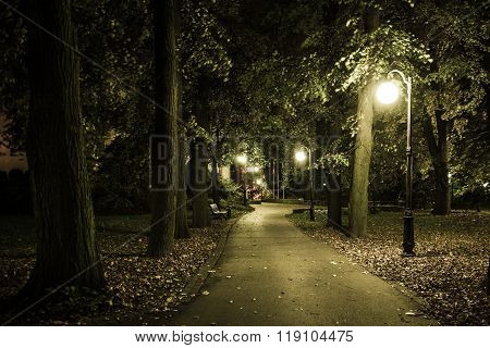 Park Night Scenery