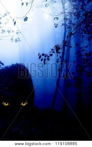 Dark series - a look from darkness. Yellow monster eyes in the dark foggy forest