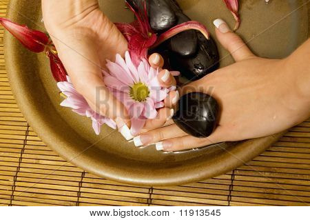 Woman's hands with flower