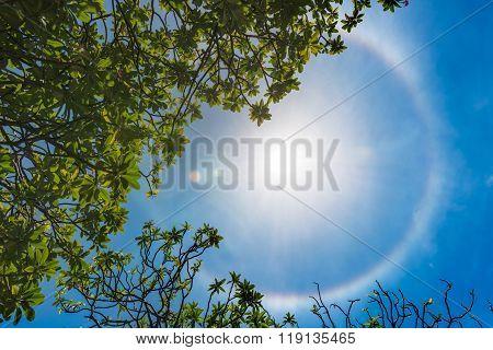 Corona Ring Of Sun