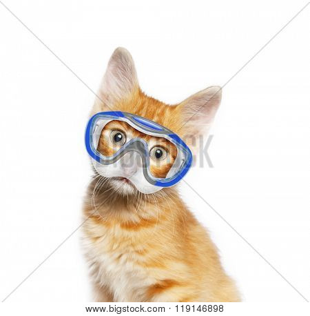 Red cat with mask for diving, isolated on white background
