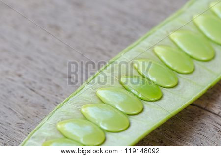 Green Seed White Popinac On Wooden Table