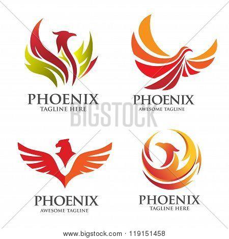Elegant Phoenix logo vector set