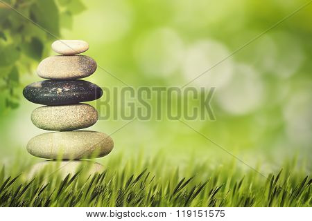 Wellness health and natural harmony concept. Abstract natural backgrounds