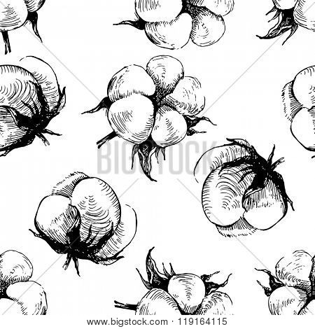 hand drawn seamless pattern with cotton plant  on white background