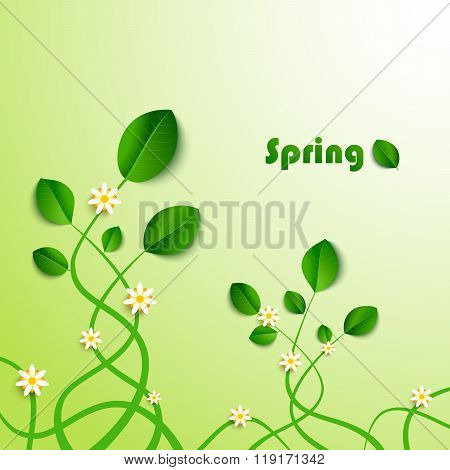 Spring Card With Green Leaves And Flowers