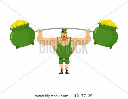Strong Leprechaun Holds Barbell And  Pot Of Full Gold. Sports For Santa With Red Beard. Wealth Of Go