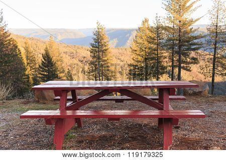 Picnic Table Near The Forest