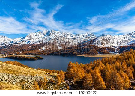 Stunning View Of Sils Lake In Golden Autumn