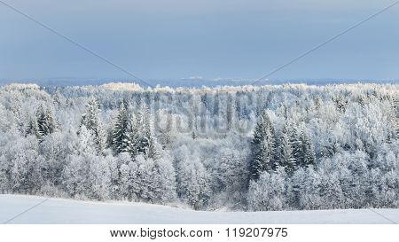 Winter View Of Hills Covered With Forest In Rime And Snow