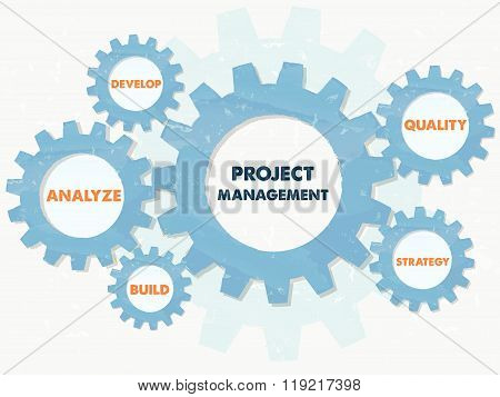 project management and business concept words in grunge flat design gears, vector