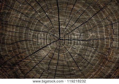 Dark  Scratched Wood Texture With Cracks. Wood Texture