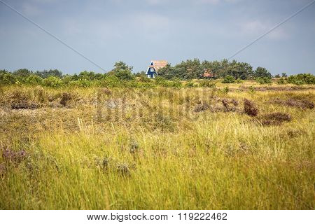 Typical Hiddensee Heath Landscape With Blue Cottage