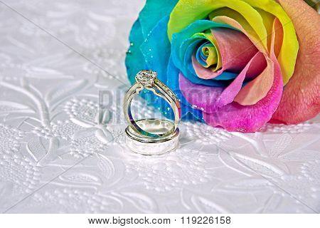 rainbow rose with wedding rings