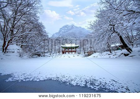 Baekyangsa Temple And Falling Snow, Naejangsan Mountain In Winter With Snow,famous Mountain In Korea