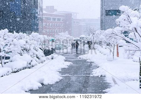 A Fast-moving Snowstorm Arrived In The South Korea Area.