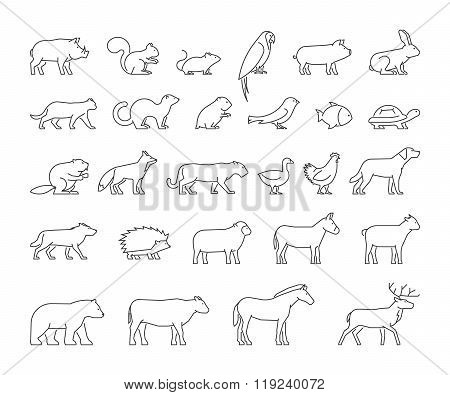 Vector line set of domestic farm and wild animals. Linear silhouettes animals isolated on a white background. Modern outline icons cat dog cow pig fox rabbit horse sheep and chicken.