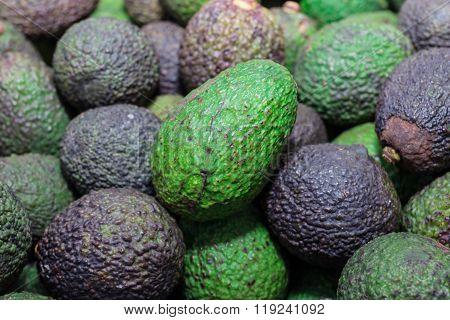 Avocado background. Fresh green avocado on a market stail