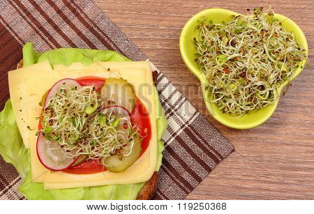 Vegetarian Sandwich And Bowl With Alfalfa And Radish Sprouts