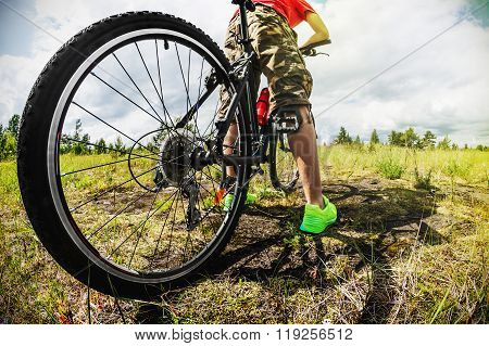 Cyclist On A Mountain Bike On A Forest Track
