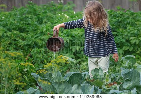 Little blonde girl watering pepper plants on green summer garden bed