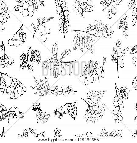 Seamless background garden and wild hand-drawn sketch berries