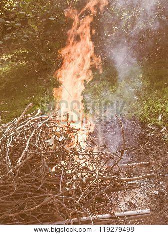 Burning Fire Vintage