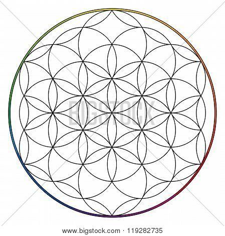 Flower Of Life, Buddhism Chakra Illustration