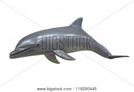 Bottle nose dolphin, isolated