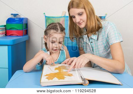 Five-year Girl And Mother Are Considering The Herbarium Of The Leaves In The Album