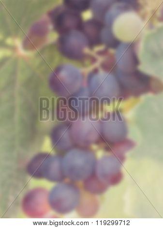 Blur Lush Grapes