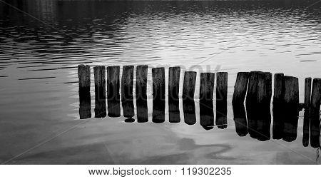 Pali nell'acqua