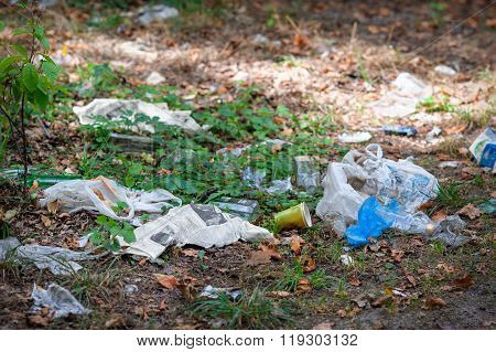 Trash in the park and forest, big problem