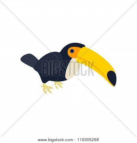 Toucan icon, isometric 3d style
