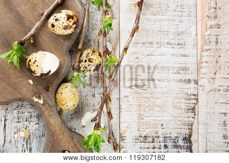 Quail eggs, green branches and vintage wooden cutting board